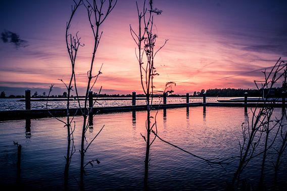 Kleurrijke zonsondergang van michael regeer