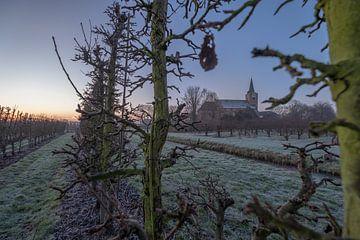 Kerk Erichem tussen fruitbomen von Moetwil en van Dijk - Fotografie