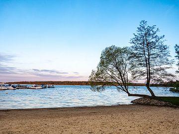 Het Müritzmeer in het Mecklenburgse merengebied van Animaflora PicsStock