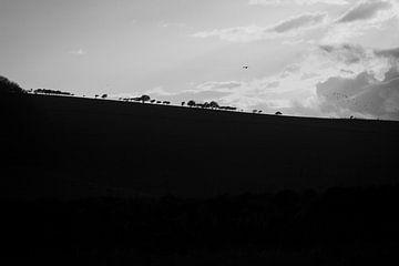 Vereinigtes Königreich | Seven Sisters Country Park von Sandra Wiersema