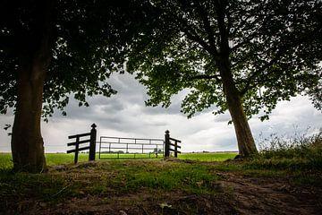 Sfeervol karakteristiek polderlandschap met hekwerk van Fotografiecor .nl