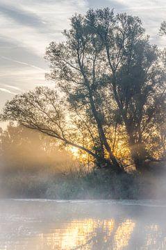 Early autumn morning. von Wildfotografie NL