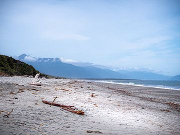 Drift Wood op het strand van de ruwe westkust van Nieuw-Zeeland van Rik Pijnenburg