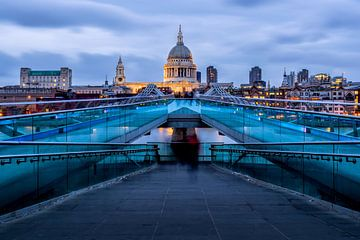 St Pauls Cathedral in Londen van Roy Poots