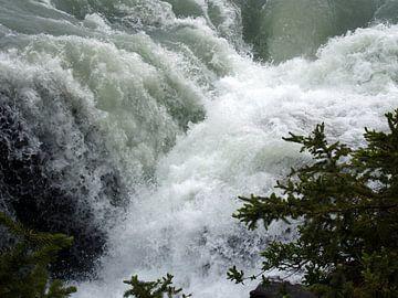 Athabasca Falls Canada  von Tonny Swinkels