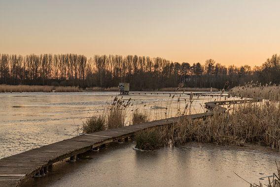 """sunset at the park """"Het Vinne"""" van Koen Ceusters"""
