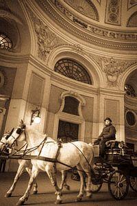 Paard en wagen van