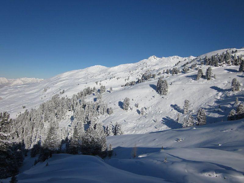 De Winter van Sander van der Lem