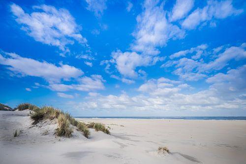 De duinen op Ameland van