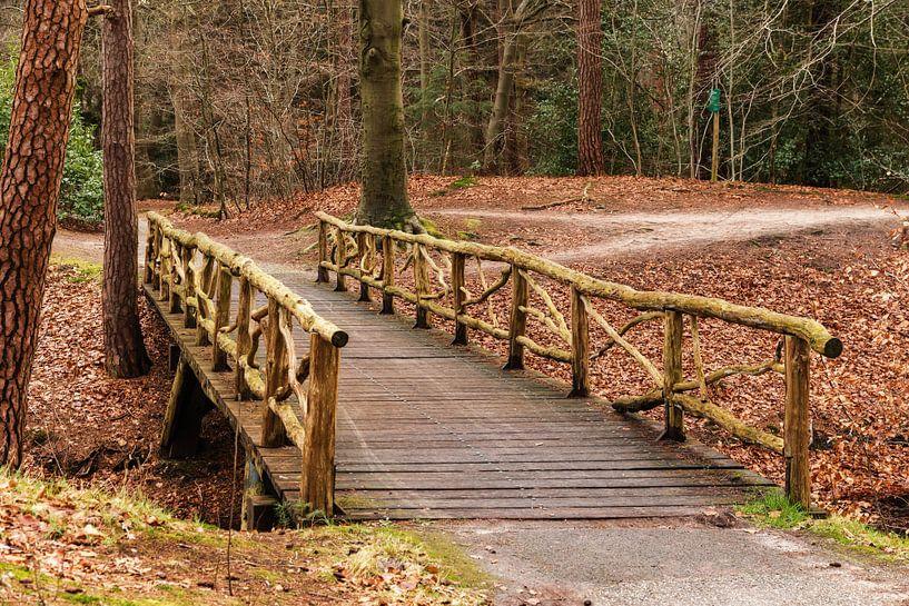 Zeisterbos met houten brug van Jaap Mulder
