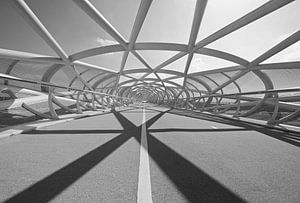 "Fietsbrug ""De Netkous"" in Rotterdam"