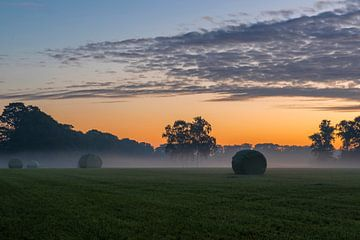 Ingepakte rollen gras in de vroege ochtend van Tonko Oosterink