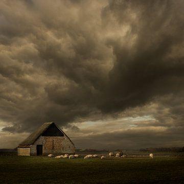 Texel Schapenboet - Niederländische Meister von Keesnan Dogger Fotografie