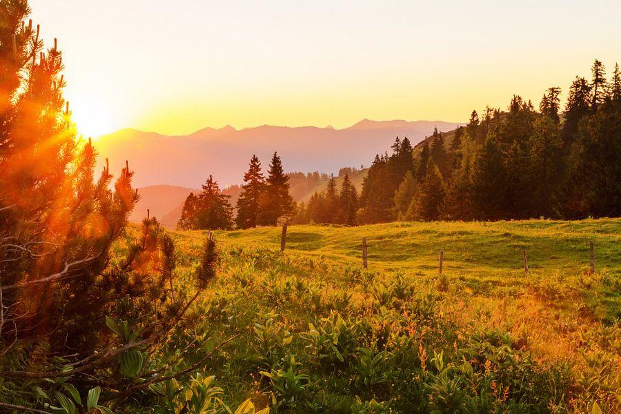 Almweide met zonsondergang