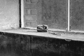 Cola-Dose im Fensterbrett von Carla van Zomeren
