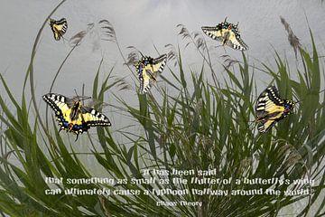 Chaos Theory - Een vlinder kan ... van Christine Nöhmeier
