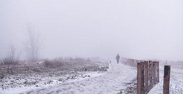 de hond uitlaten in een winter wonderland van Tania Perneel