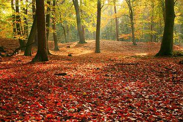 Herfst in landgoed Bantam