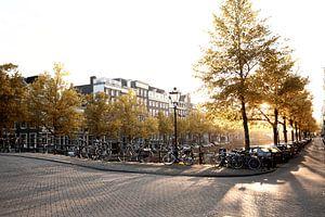 Amsterdam Shadows.