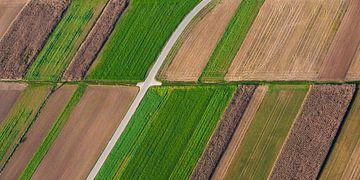 Felder auf der Schwäbischen Alb von Werner Dieterich