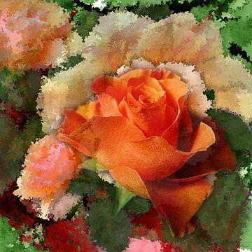 Rose  4 von Gertrud Scheffler
