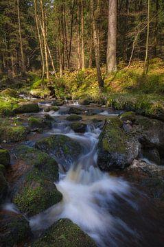 Waterfall at Harz Mountain van Steffen Gierok