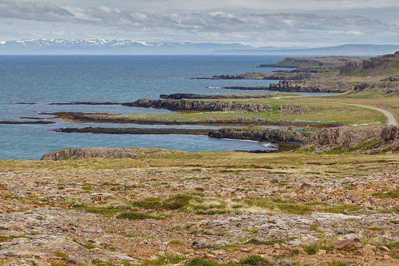 De IJslandse kustlijn bij de westfjords