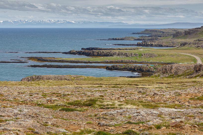 De IJslandse kustlijn bij de westfjords van Menno Schaefer