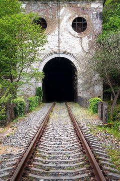 Tunnel ferroviaire abandonné. sur Roman Robroek