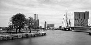 Skyline Erasmusbrug en Kop van Zuid vanaf Leuvehaven van