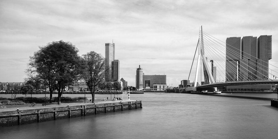 Skyline Erasmusbrug en Kop van Zuid vanaf Leuvehaven van Mark De Rooij