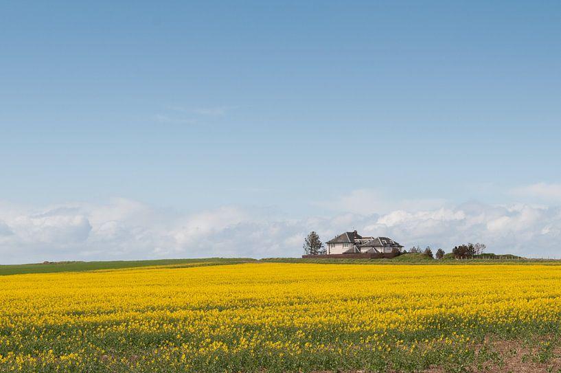 Englisch Landschaft von Ooks Doggenaar