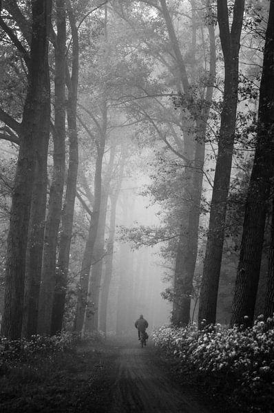 Eenzame fietser in de mist van Bas Wolfs