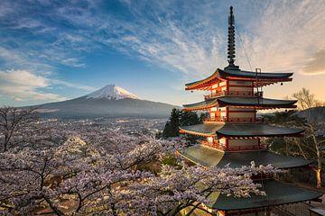 De berg Fuji met kersenbloesems in Japan van Michael Abid