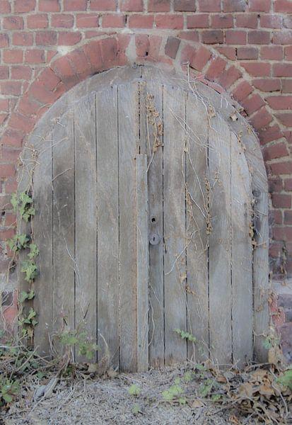 Kelderdeur van Fatima Maria Mernisi
