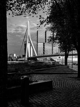 Erasmusbrücke von Patrick van Lion