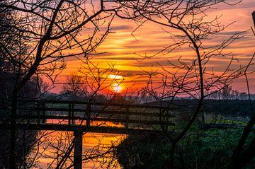 Zonsondergang door kale natuur van Richard Steenvoorden