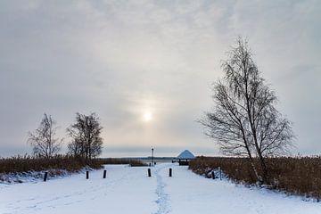 Winter am Bodden bei Born von Rico Ködder