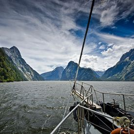 Sailing in Milford Sound - New Zealand van Ricardo Bouman | Fotografie