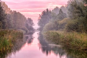 Herbst De Elzen Dordrecht von Rob van der Teen