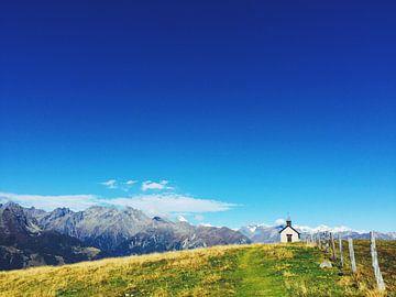 Alpenwiese van Anna Sophia Fleißner