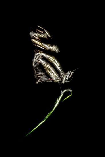 Vlinder op een blad (zilver)