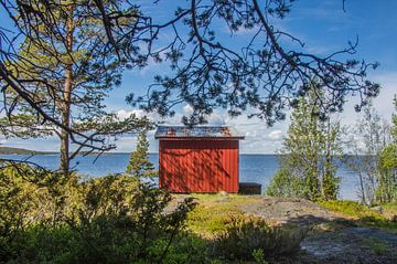 Rood huisje aan de kust in Zweden van Bianca Kramer