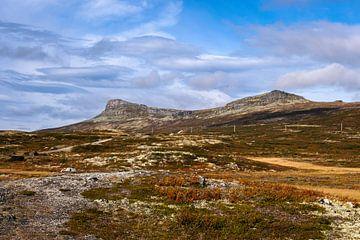 In den Bergen von Rondane von Joke Beers-Blom