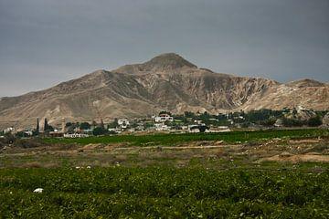 Un champ vert et une montagne dans les environs de Jéricho. sur Michael Semenov