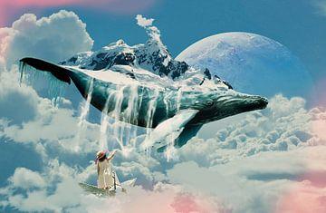 Walvis van Anett Kazimierska