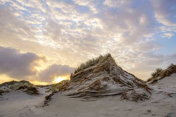 Terschelling en de prachtige natuur van Dirk van Egmond