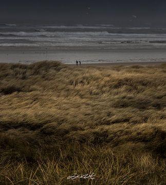 Storm aan zee van Herke Kaandorp
