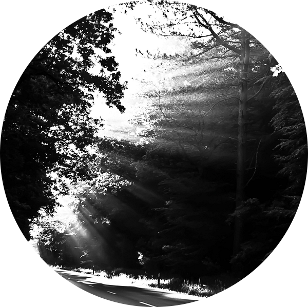 dromen   straat van Norbert Sülzner