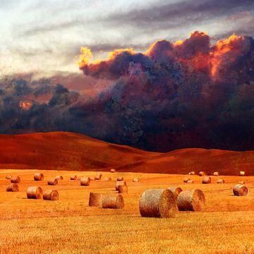 oogsttijd van Andreas Wemmje